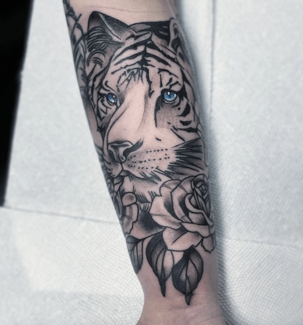 Inner forearm tattoo design with a white tiger by @tattooerzacklevey