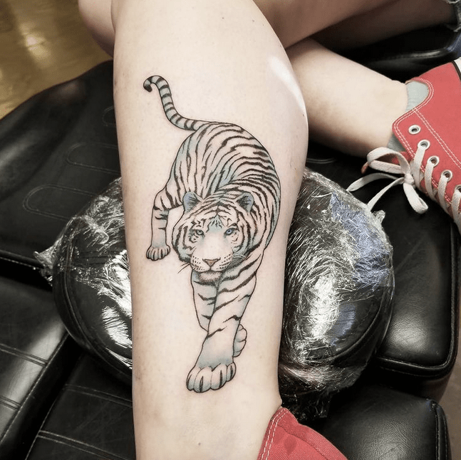 Simple white tiger tattoo by @ripley_tattoo
