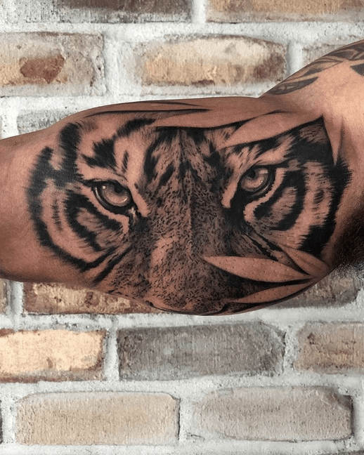 Tiger eyes with leaves by @valerioart