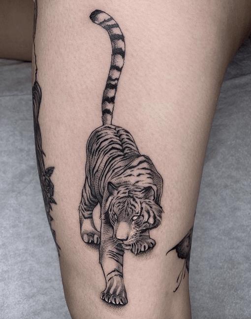 White tiger tattoo design by @demonsandstripes