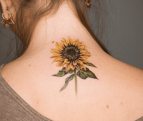 Realistic back sunflower tattoo by @tattooprodigies