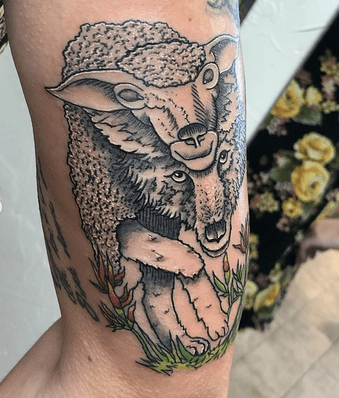 Illustrative wolf in sheep's clothing by @mrartistpainterman