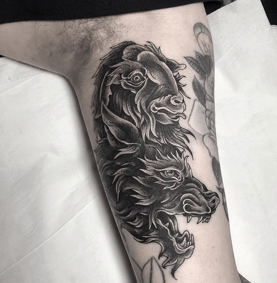 Neotraditional wolf in sheep's clothing by @hollywilcoxtattoo