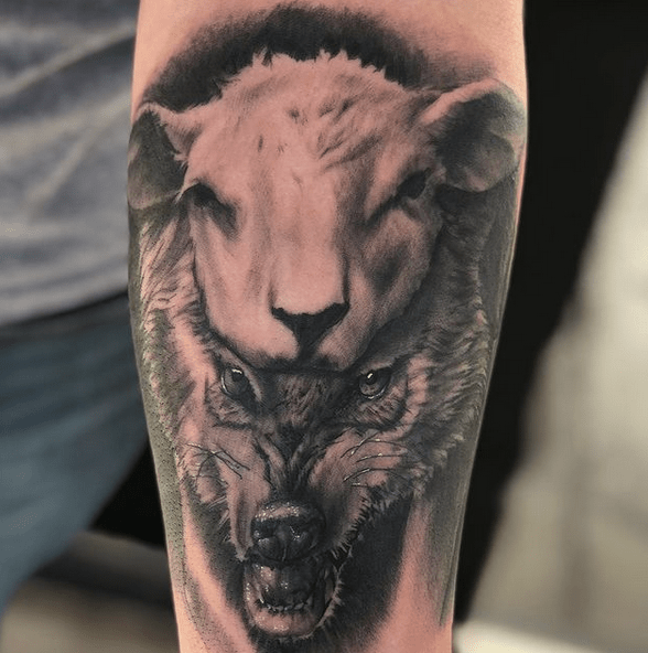 Realistic wolf in sheep's clothing by @travisptattoo