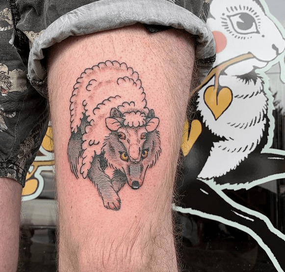 Small illustrative wolf in sheep's clothing tattoo by @jsandartsytattoos